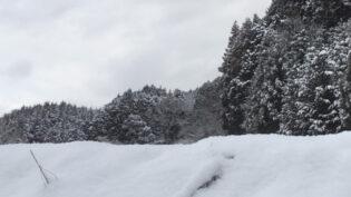 雪に埋もれた猟場