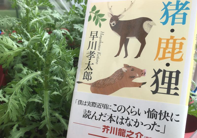 『猪・鹿・狸』