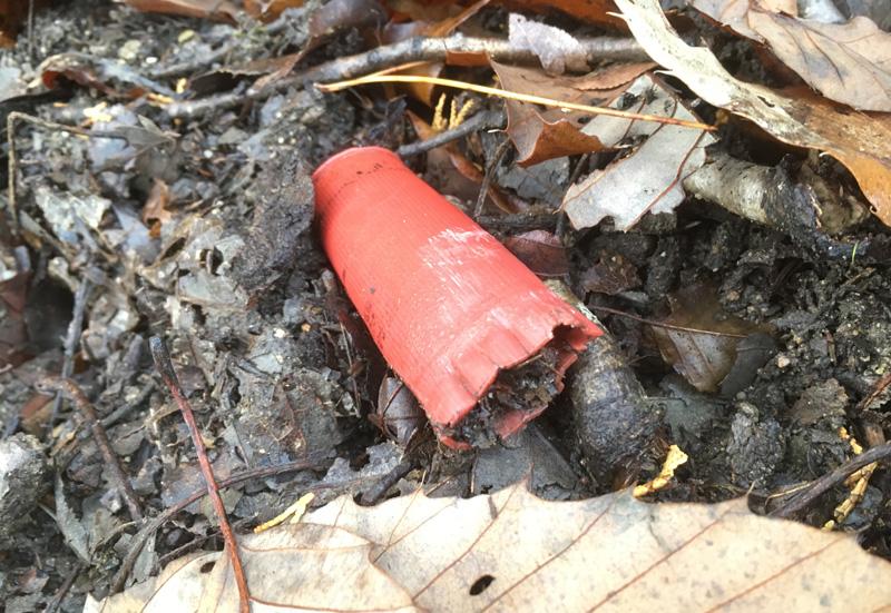 猟場で見かけた古い薬莢