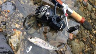 「ミッチェル408とスプーンで釣ったアマゴ」サムネイル