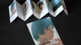 『誰も知らない』チラシ